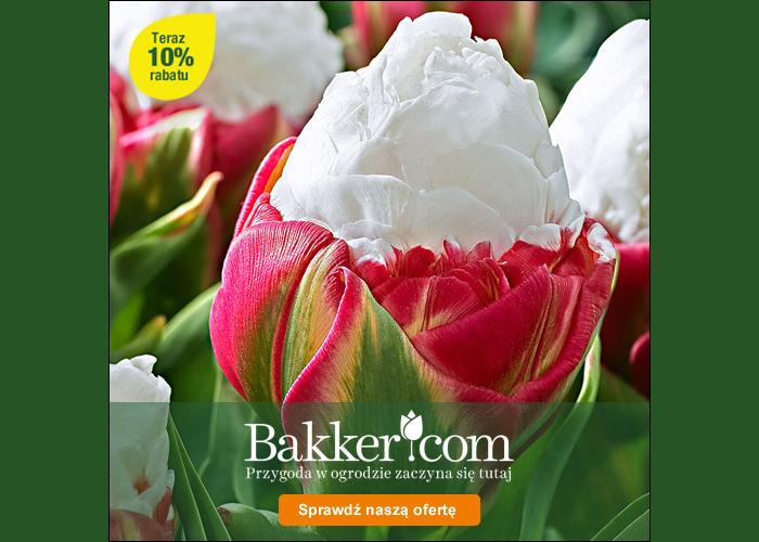 10% zniżki dla klientów Refunder w Bakker.