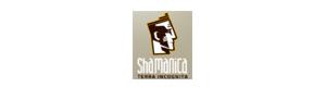 Shamanica.pl